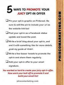 5 Ways to Promo Your Optin Checklist