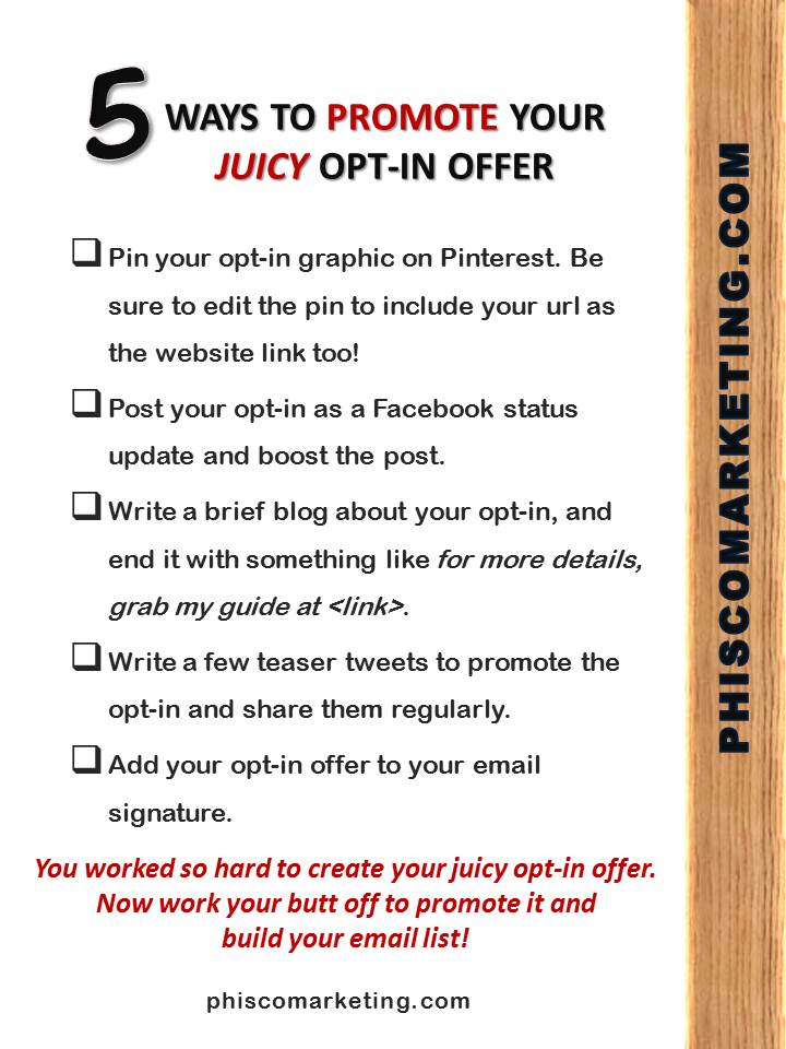 5 Ways to Promote Your Juicy Opt-In Email Promotion
